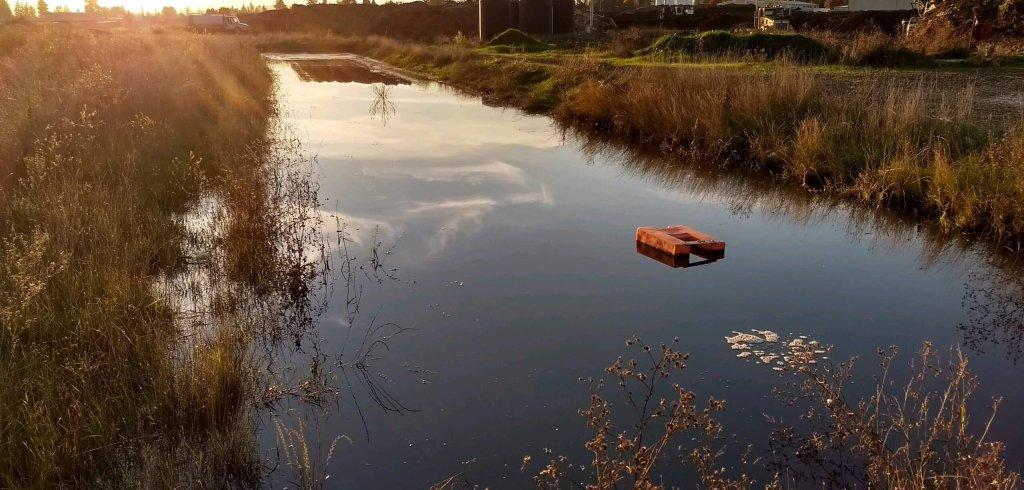 Recology VRZ pond